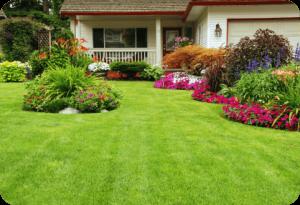 Southlake lawn care