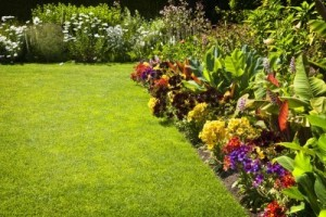 flower mound lawn care