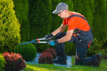landscaping trimming service coppell, tx