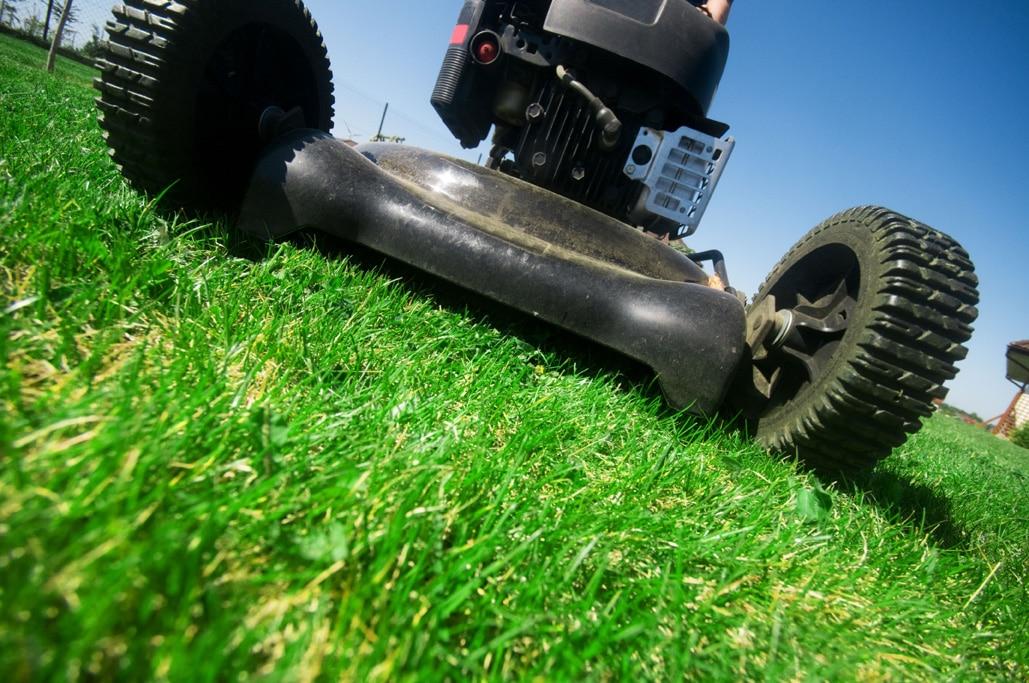 lawn mower regular mulching