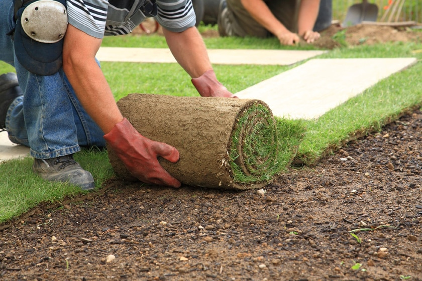 Flower Mound Sod Installation process flower mound