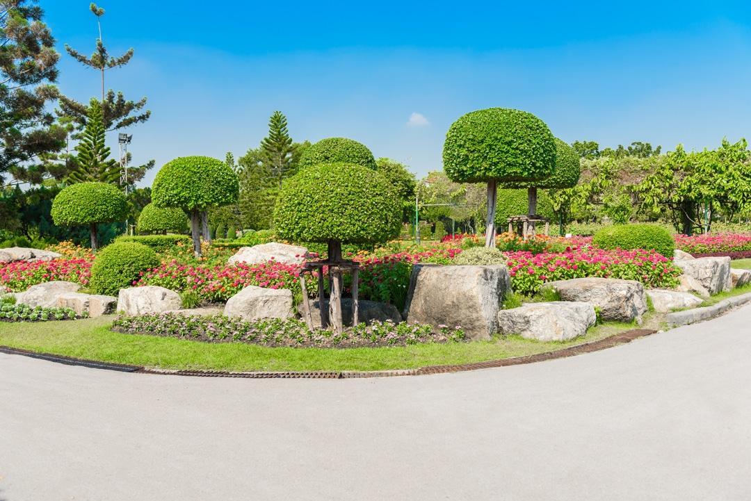 Landscaping lantana tx ryno lawn care llc for Home turf texas landscape design llc