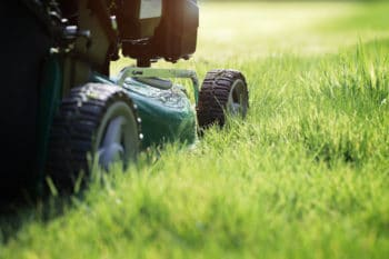 lawn care coppell, tx maintenance service by Ryno
