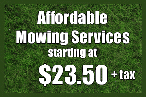 lawn care service highland village, tx affordable mowing