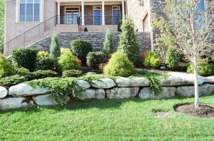 stone border landscaping