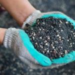 soil solutions - top dressing