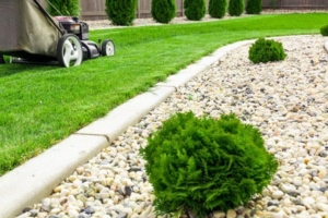 landscaping with rocks no mulch green grass