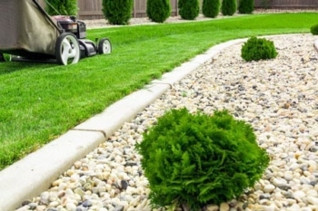 lawn mowing & maintenance yard care