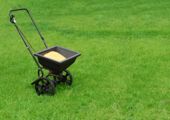 lawn fertilization