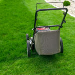 lawn mowing maintenance