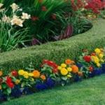 full service lawn maintenance
