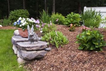 spring garden landscaping