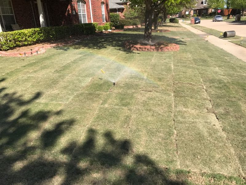 Front yard makeovers before and after ryno lawn care llc for Care for new sod