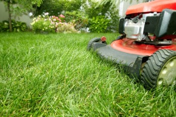 Lawn Care Service Flower Mound, TX