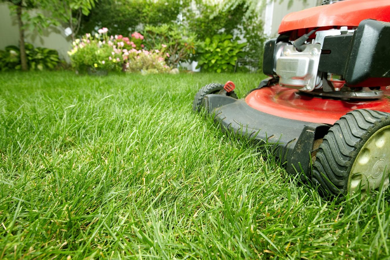Lawn Service Ryno Lawn Care Llc