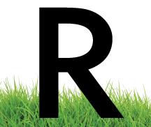 ryno lawn care