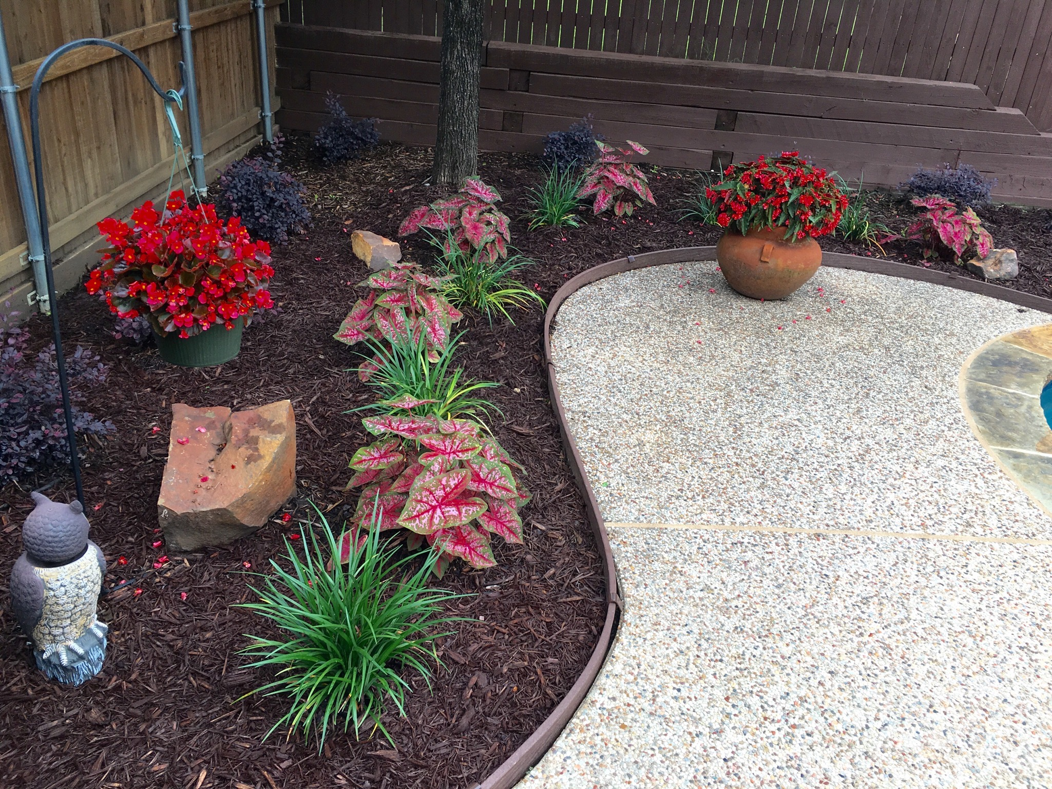 flower bed landscaping with plastic edging
