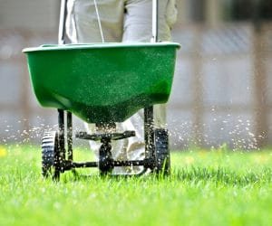 Fall Lawn Fertilizer When to Apply