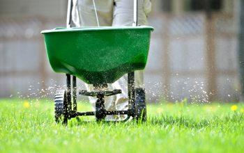 Fall Lawn Fertilizer When to Apply