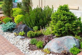 landscaping service frisco tx rocks flower bed