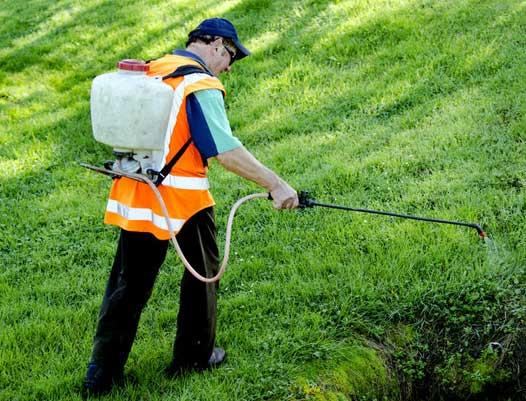 herbicide weed control prosper, tx