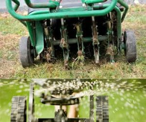 Why Is Lawn Aeration Important?
