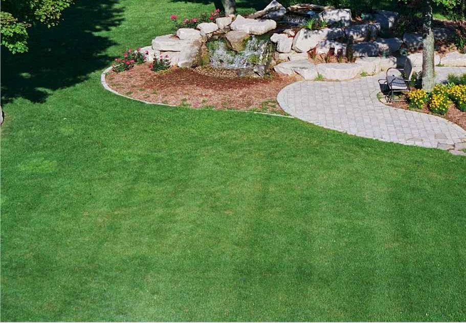 flower mound lawn care mowing services