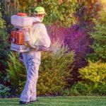 fungicide treatments