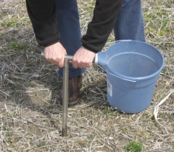 soil sample
