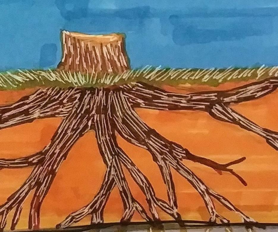 Tree Roots Grow Deep