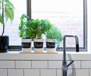 Indoor Kitchen Herb Garden Design Ideas