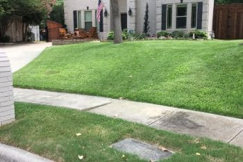 green lawn weed control fertilization