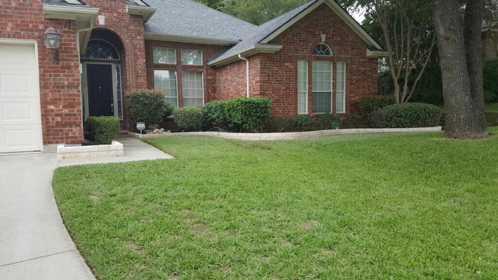 lawn fertilization weed control