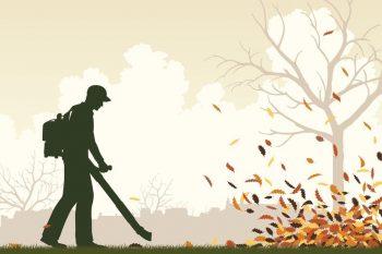 leaf blower man blowing leaves
