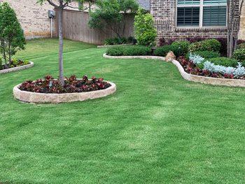 green grass weed control lawn fertilization service